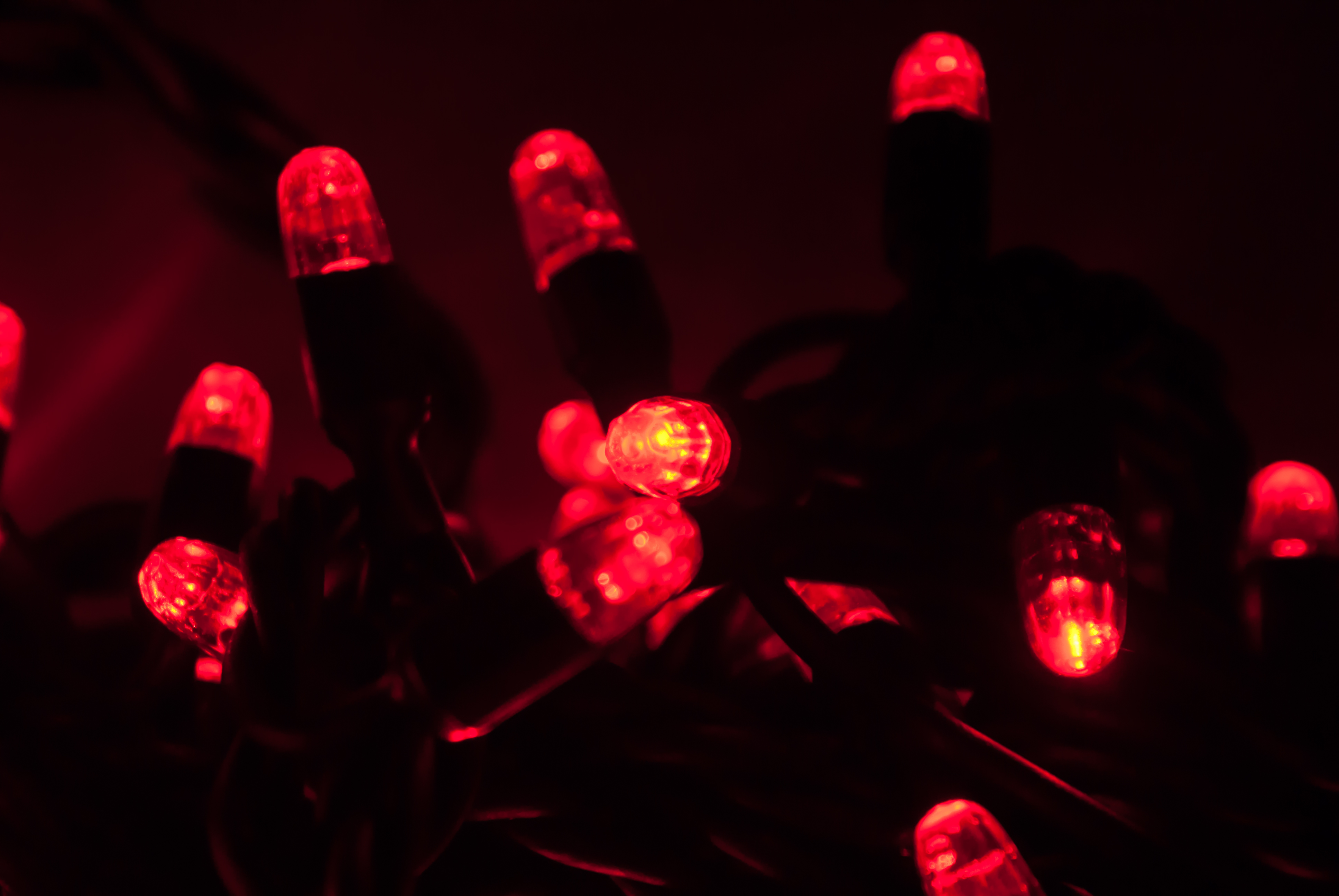 String Lights Red : PREMIER LED Red Fairy String Lights Garden Tree Connectable Indoor Outdoor Party